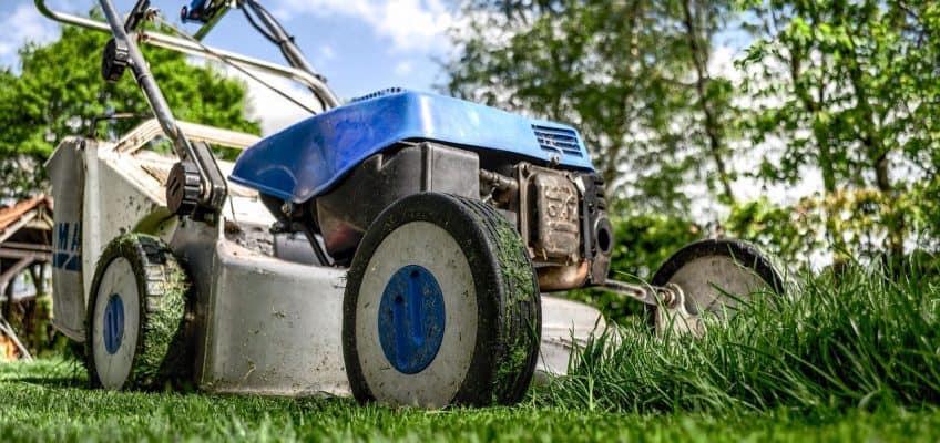Devon Homcare Solutions - Gardening