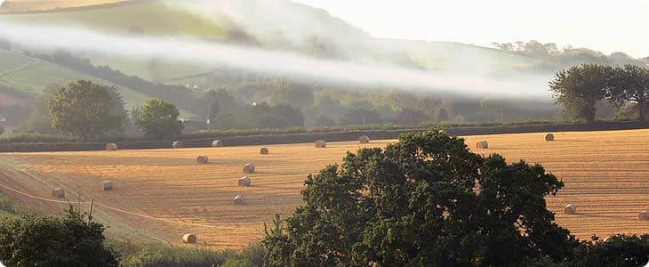 devon farms