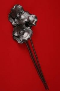 steel poppies