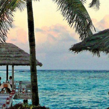 Tropic Breeze