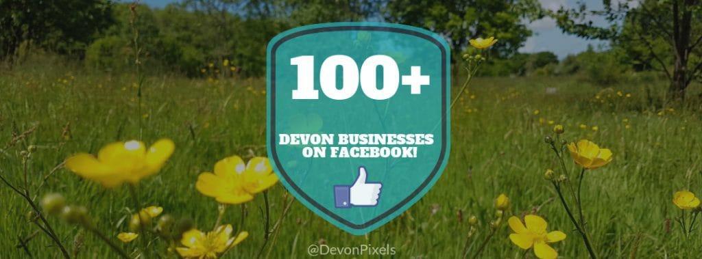 100 devon businesses on social media