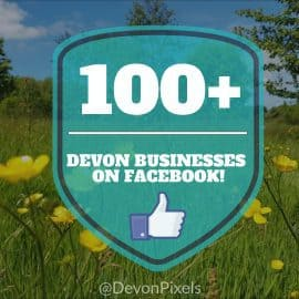 100 Devon Businesses on facebook